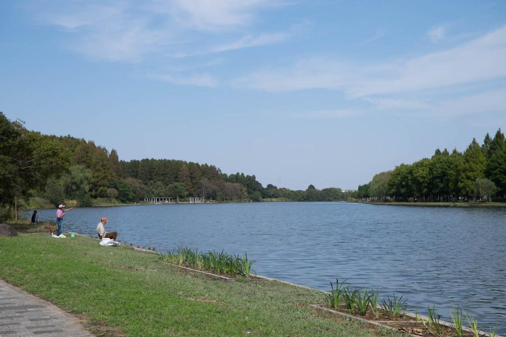 水元公園141011_01