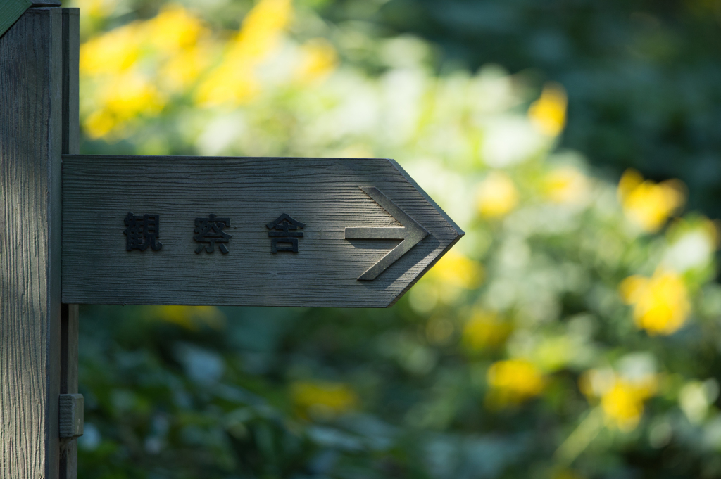 葛西臨海公園141019_02