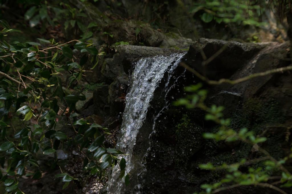 高尾山140426_02